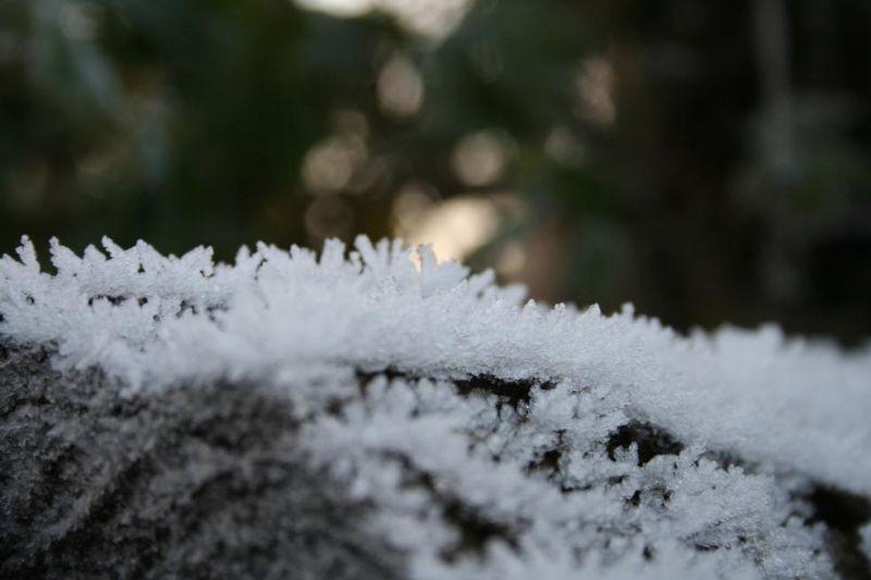 hiver05